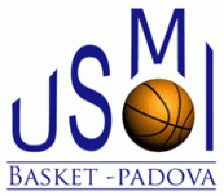 USMI_Logo